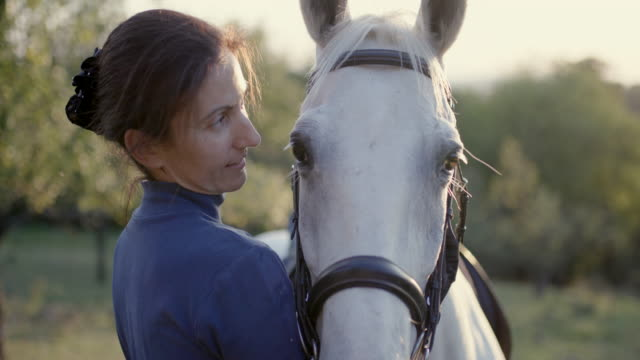 woman talking to white horse with affection - briglia video stock e b–roll