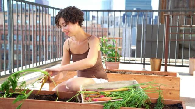 frau, die dazu neigt, ihren dachgarten auf dem - dachgarten videos stock-videos und b-roll-filmmaterial