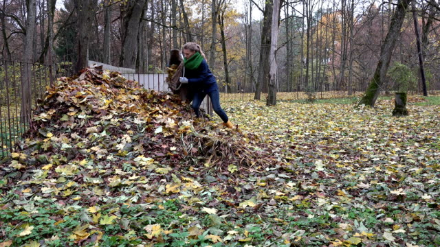 woman throw autumnal leaves out of bag into heap compost. FullHD video