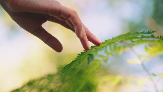Woman touching leafs
