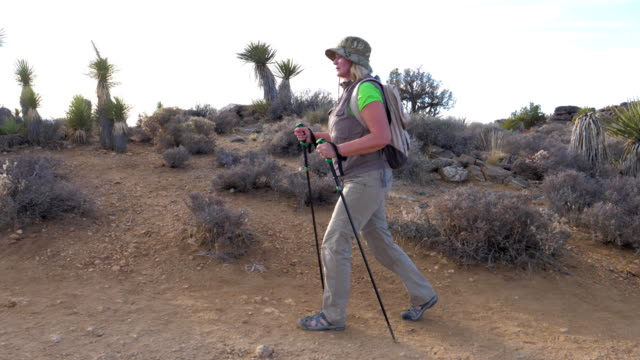 Woman Tourist Goes On The Trail In The Mojave Desert, Amid The Cactus, Side View Hiking a woman in sun-protective clothing with a backpack and trekking sticks, walks along the trail in Mojave Desert, against the backdrop of cacti. Side view, slow motion. Joshua Tree National Park mojave desert stock videos & royalty-free footage