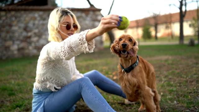 vídeos y material grabado en eventos de stock de mujer entrenando a su perro en el parque - training