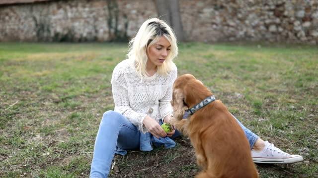 vídeos y material grabado en eventos de stock de mujer entrenando a su perro - training