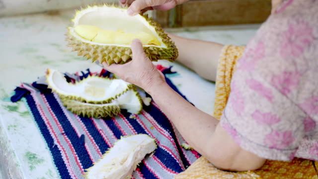 Woman Try to Peeling Durian King of Fruit in Thailand.