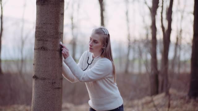 kvinna använder ett stetoskop och undersöker ett träd i skogen - recycling heart bildbanksvideor och videomaterial från bakom kulisserna