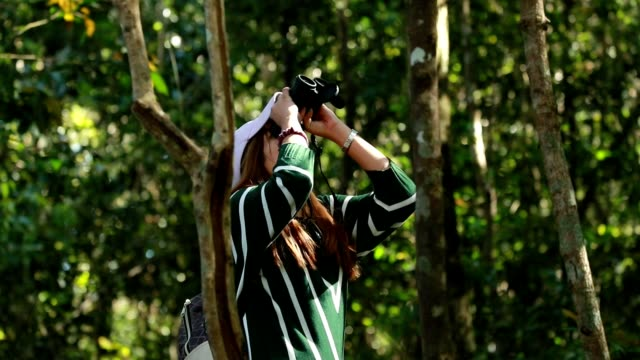 Woman using binoculars in the forest, slow motion video