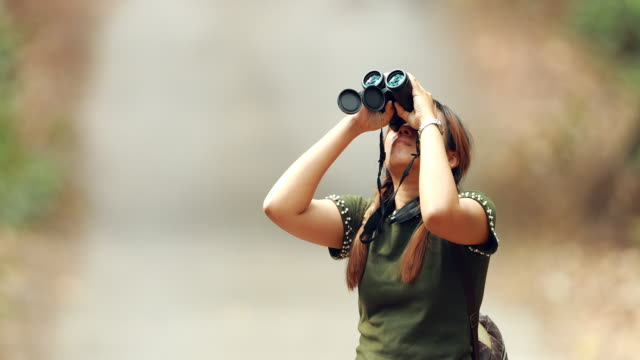 Woman using binoculars in the forest video