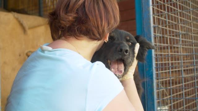 Woman volunteer and shaggy mongrel dog