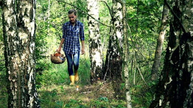 Woman walk and find red cap boletus mushroom under birch tree video
