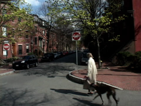 Woman Walking a Dog video