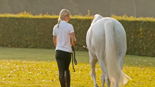 vidéos et rushes de slo missouri femme marchant avec cheval blanc au lever du soleil - dressage équestre