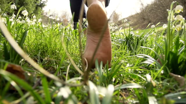 hd super slow-mo: woman walking barefoot through the grass - walking stok videoları ve detay görüntü çekimi