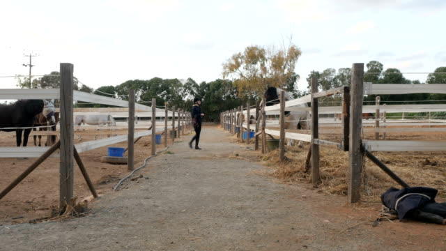 Woman walking between the stables outdoors video