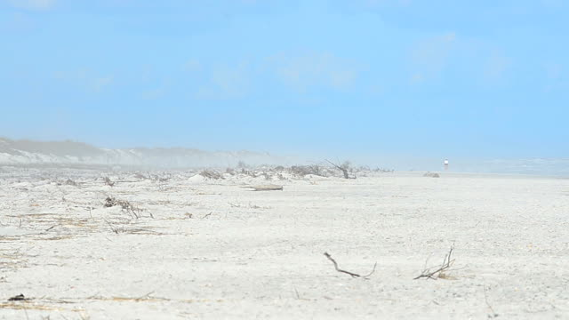 Woman walking in the hazy distance on a windswept eroded beach Eroded beach with exposed roots where coastal vegetation was decimated by Hurricane Mathew in 2016. In the distance, a woman walks down the beach, obscured by a mix of heat haze and salt spray blown in by a strong onshore breeze over rough seas.  Footage shot at Anastasia State Park on the Atlantic coast of northeast Florida. Nikon D7200 with Sigma 300mm f2.8 lens heat haze stock videos & royalty-free footage
