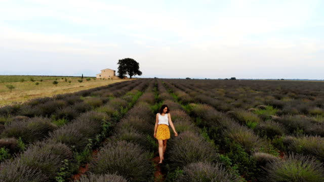 Woman walking on  lavender field in Provence Young Caucasian woman in yellow skirt  walking on  lavender field in Provence provence alpes cote d'azur stock videos & royalty-free footage