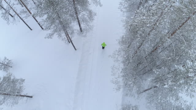 aerial: woman walking on road through snowy forest during wintertime in finland - trekking sul ghiaccio video stock e b–roll