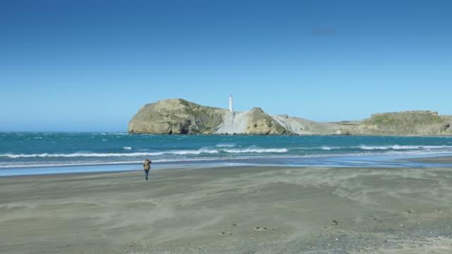 Woman Walking on Windswept Beach. Castlepoint, New Zealand video