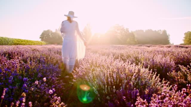 vídeos de stock e filmes b-roll de slo mo woman walking through field of lavender flowers - lavanda planta