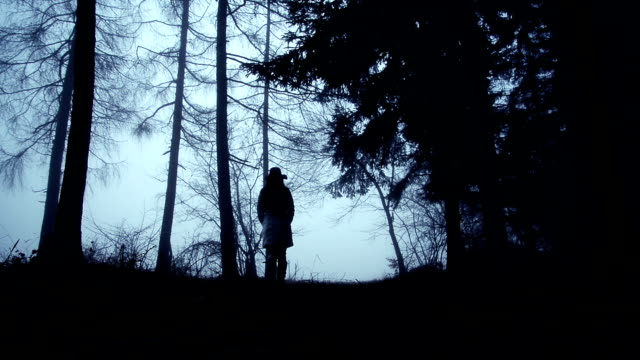 Woman walking through forest video