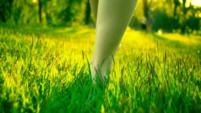 frau zu fuß durch grünen sommer rasen - schneeflocke sonnenaufgang stock-videos und b-roll-filmmaterial