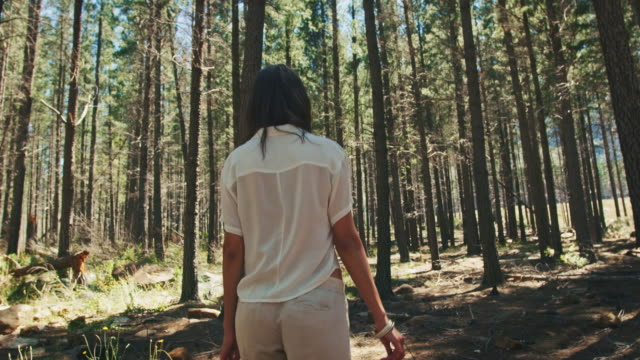 woman walking through the forest - sustainable living stock videos & royalty-free footage