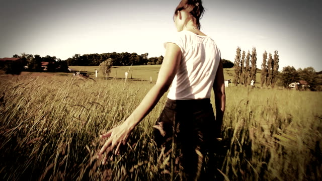 Woman walking touching long grass in field video