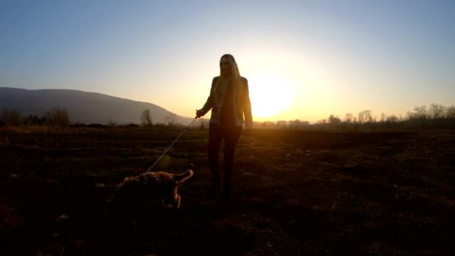 kvinna som går med hund - hund skog bildbanksvideor och videomaterial från bakom kulisserna