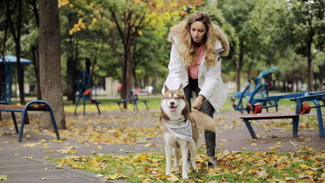 Woman walking with her dog husky in park at the autumn day, slow motion video