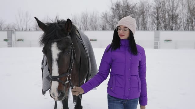 woman walking with horse at snowy winter day - briglia video stock e b–roll