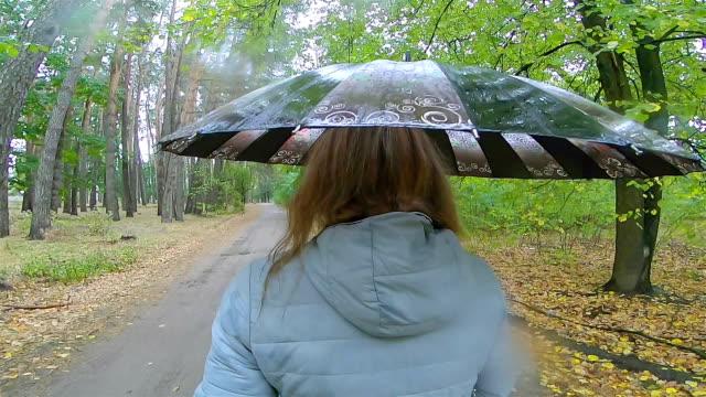 eine frau geht bei regnerischem wetter. - sonnenschirm stock-videos und b-roll-filmmaterial