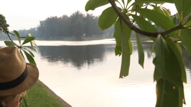 Woman walks towards tranquil lake after sunrise video