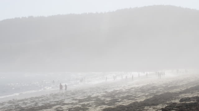 Woman Walks With Child On The Beach In Thick Fog While People Play In Water