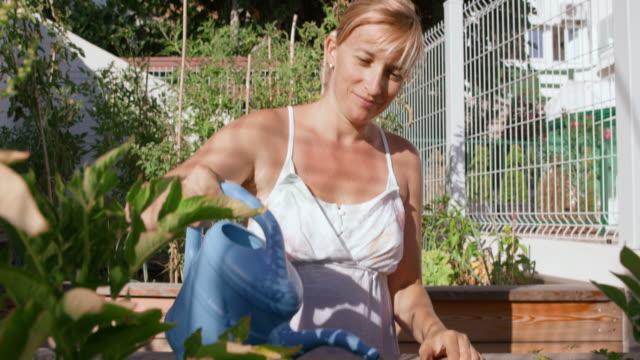 bewässerung von pflanzen in ihrem garten auf sonnigen tag tu-frau - dachgarten videos stock-videos und b-roll-filmmaterial