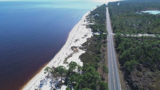 Woman wearing a wide summer dress walking on a highway along white sand dunes and pine forest on the Atlantic coast at Alligator Point, Panacea, North Florida. Aerial drone video with the cinematic forward and tilting up camera motion.