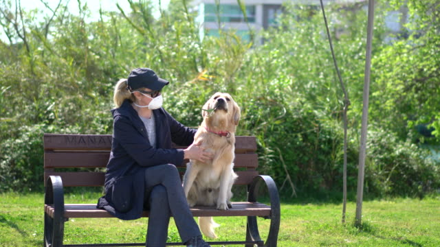 woman with a face mask sitting her dog in park bench - садовая скамья стоковые видео и кадры b-roll