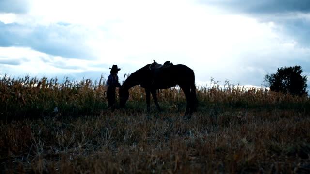 Femme avec un cheval dans un domaine - Vidéo