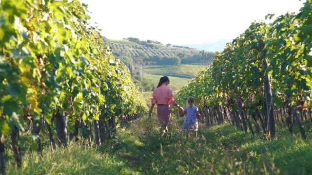 vídeos de stock e filmes b-roll de woman with daughter walking in tuscan vineyards - agricultora