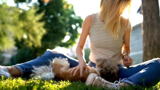 kvinna med hund i en park - endast unga kvinnor bildbanksvideor och videomaterial från bakom kulisserna
