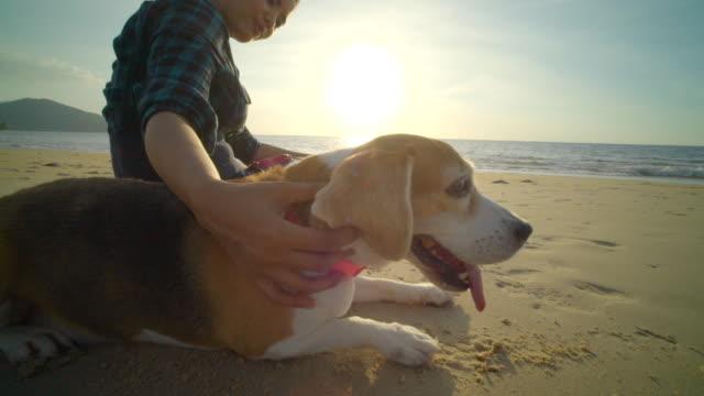 Vrouw met hond op het strand video
