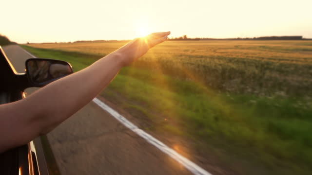 Woman with hand in breeze Woman holds her hand out from a car window as its driving down the highway at sunset.  A sense of joy, vitality and freedom are portrayed by the child like actions of this young adult. The car travels beside a golden wheat field in a prairie landscape. road trip stock videos & royalty-free footage
