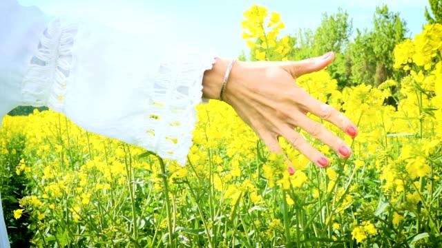 Woman with hat in yellow flowering rape field video