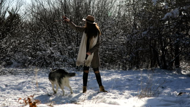 woman with husky dog have fun in forest during winter - cane addestrato video stock e b–roll