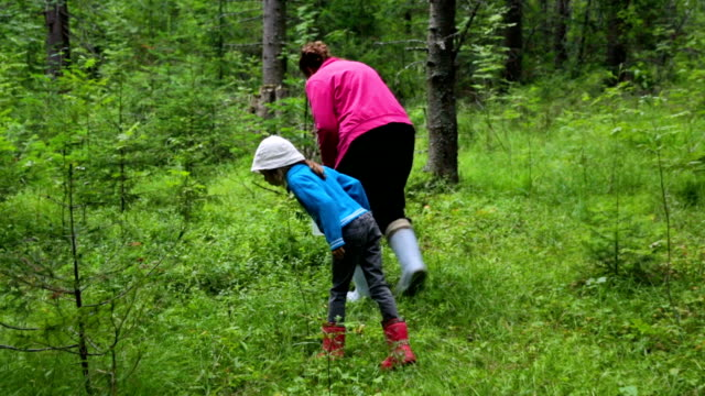 woman with little girl walking in forest - bacca video stock e b–roll