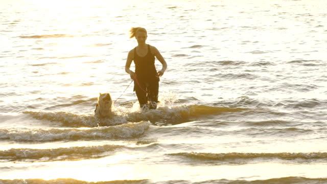 woman with siberian husky dog playing on beach - cane husky video stock e b–roll