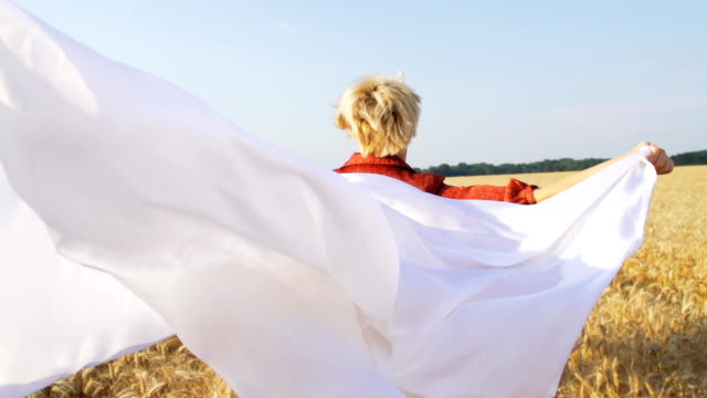 HD SUPER SLOW-MOTION: Woman With Veil In Wheat Field video