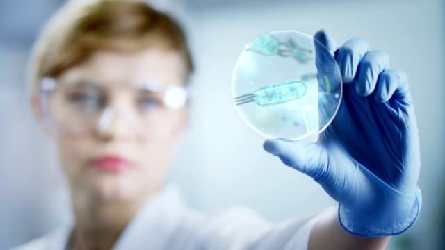 Woman working at the laboratory video