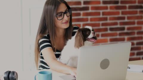 vídeos y material grabado en eventos de stock de mujer trabajando desde casa - mascota