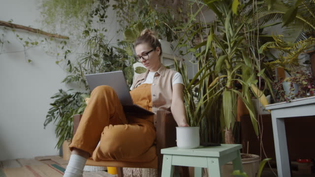 Woman Working on Laptop and Drinking Tea in Home Garden Zoom in shot of young woman sitting in armchair, surfing the Internet on laptop and drinking tea from mug while working in home garden filled with lots of plants front or back yard stock videos & royalty-free footage