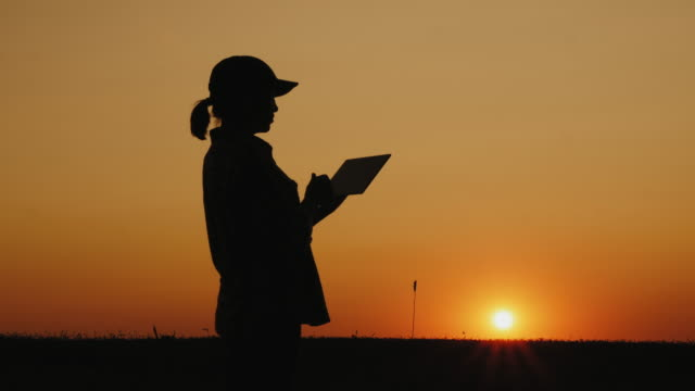 woman working with a tablet at sunset - agricoltrice video stock e b–roll