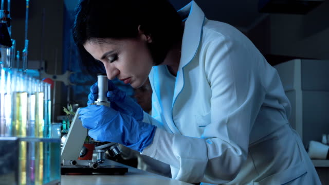 Woman working with small microscope video